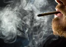 Tobacco & Cannabis